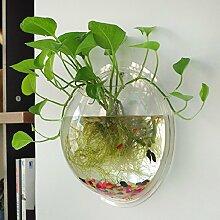 Idylische Blase Schüssel Pflanze Aquarium aus Acryl mit Wandhalterung Blumentopf GartenTerrasse Balkon Wand-Dekor Durchmesser : 15 cm (Transparente)
