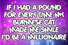 If I had a Pfund für jeden Zeit My burmesische Made Me Smile wäre ich ein Millionär Katze Kitten Kühlschrank Magnet als Geschenk/Geschenk