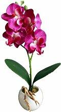 Igemy Vier Schmetterling Orchidee Meaty Plant Bonsai Kreative Blumen Arrangieren Zubehör (Purple)
