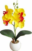 Igemy Vier Schmetterling Orchidee Meaty Plant Bonsai Kreative Blumen Arrangieren Zubehör (Yellow)
