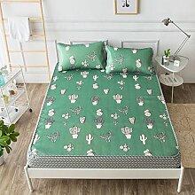 Im Sommer Kühlung Isomatte und 2 Kissenbezüge Insgesamt 3 Sätze, Kaktus Matte Art Sitze Klimaanlage Mat drei Stück, grüner Kaktus, 150 × 200 cm