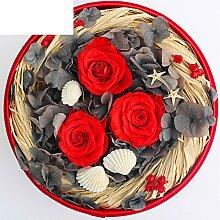 Importiert Live Blume Geschenk-box/Das Glas Live