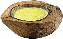 infactory Duftkerze: Anti-Mücken-Kerze in
