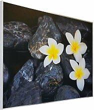 Infrarotheizung Bildheizung 900Watt SOMMERSCHLUSS-ANGEBOT von InfrarotPro ® Made in Germany 7 JAHRE GARANTIE Elektroheizung Infrarotheizkörper