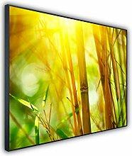 InfrarotPro Glas Infrarotheizung Bildheizung