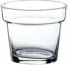 INNA-Glas Blumentopf - Glasvase Dave, klar,