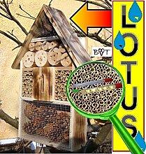 Insektenhotel LOTUS + 2 x Sichtglas + Marienkäferhaus + Schmetterlingshaus, geflammt gebrannt schwarz natur Gartendeko Nistkasten Gartendeko Insektenhotel LOTUS + 2 Sichtgläser 8 und 11 mm Beobachtungsröhrchen komplett mit Füllmaterial, Insektenhäuschen- ökologische biologische natürliche Blattlausbekämpfung