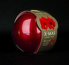 Inter Flower -Amaryllis Hippeastrum in Glaskugel - ROT - XMAS Edition - rote Dekokugel - rot blühend - super Geschenkidee - modern (1)