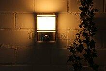 """IR Wand Außenleuchte mit Bewegungsmelder Edelstahl IP44 Außenlampe Sensor Bewegungssensor Infrarot Hoflampe Gartenlampe Gartenleuchte """" Made for Licht-Idee®"""