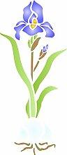 Iris & Leuchtmittel Schablone-11,5x