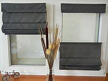 IXX-Design Faltrollo , Raffrollo , Raffstore schnurlos mit Plissee Technik, frei verschiebbar, Farbe: grau , Größe: 100x160cm, für Decken - Wandmontage und Montage ohne bohren, auf dem Rahmen