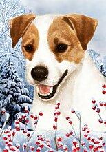 Jack Russell Terrier von Tamara Burnett Winter