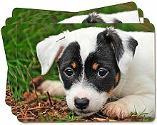 Jack-Russell- Welpen-Hund Bild Tischsets in