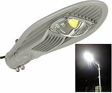 JADIDIS 30W Led Straßenlampe Straßenleuchte Außenleuchte Hofbeleuchtung Gartenlampe Strassenlicht Strassenlaterne Kaltweiß 2400-3000LM Sicherheit Lampe [Energieklasse A++]