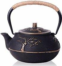 japanischen Gusseisen Teekanne Kettle mit