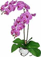 Jarown Phalaenopsis Orchidee Künstliche