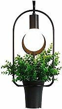 JDFM5 Kreative Pflanze modern Wandlampe Innen