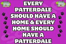 Jedes Patterdale Sollte für Zuhause Und für Jede