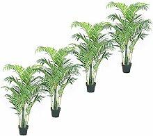 Jellywood Goldfruchtpalme Areca-Palme (Dypsis