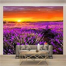 JFSZSD Fototapete Sonnenuntergang & Lavendel Vlies