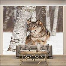 JFSZSD Fototapete Tiere & Wolf Vlies Leinwandbild