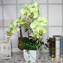 JFWMZyq Künstliche Blume Phalaenopsis
