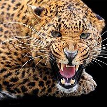 JIAOYK Fototapete 3D Tiere & Leopard Wandgemälde
