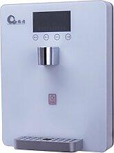 JIAYIDE® Wasserfilter Aufsatz-Wasser-Filtration-System durch belebtes Wasser, hoher pH alkalischer Ionizer Wasser-Reinigungsapparat-Spender, Super-schnelle Filtration, langlebiger Mineralstein keramischer Kohlefilter, verbessert pH u. ORP, fügt wesentliche Mineralien, entfernt schwere Metalle, Flouride u. Bakterien, Haus an U. Büro-Gebrauch GR-gxj-1001(White)