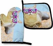 Jimbseo Eine fette Katze mit rosa Hawaii-Brille