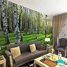 JINFANGBZ Tapete Fototapete 3d Effekt Birkenwald