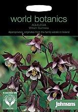 Johnsons Welt Botanics Blumen Pictorial Pack