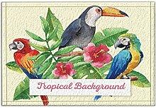 JoneAJ Schöne Papagei und Tukan und Blumen und