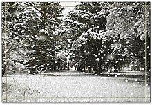 JoneAJ Wald im Schnee Bad Bad Teppich rutschfeste