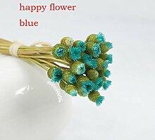 Joyas 30 getrocknete Blumen glückliche Blume