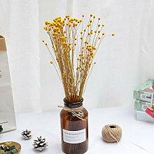 Joyas 50 Stück Mini Happy Flowers Natürliche