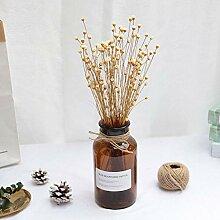 Joyas 50pcs Mini glückliche Blumen natürliche