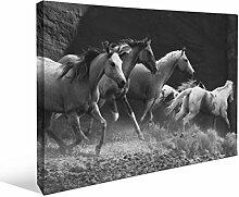 JP London bwcnv2196Monochrome 21965,1cm Dick Schwergewicht Schwarz & White Gallery Wrap Leinwand Art Wand Rolling Thunder Wild Hengst Stampede Tapeten, 61x 45,7cm