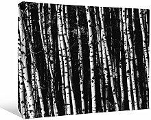 JP London bwmcnv21755,1cm Dick Schwergewicht Schwarz & White Gallery Wrap Leinwand Avant Birke Baum Forest Gothic Tiefe Tapeten, 61x 91,4cm