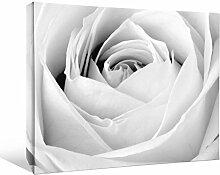 JP London bwmcnv21945,1cm Dick Schwergewicht Schwarz & White Gallery Wrap Leinwand La Fin Du Rose sanft Blume Tapete, 91,4x 61cm