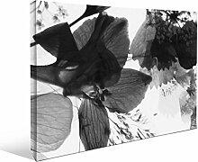 JP London bwmcnv22125,1cm Dick Schwergewicht Schwarz & White Gallery Wrap Leinwand Floral veranlassen und Fly Bunches Tapeten, 91,4x 61cm