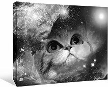 JP London bwmcnv22525,1cm Dick Schwergewicht Schwarz & White Gallery Wrap Leinwand Space Cat Galaxy Nebel Sterne Kinder Tapete, 91,4x 61cm