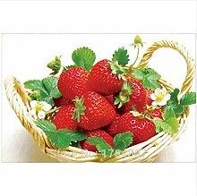 JUAMAZING Erdbeere, Korb Malen nach Zahlen DIY