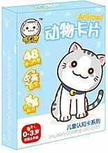 JujubeZAO Spielzeug für Geschenk, 48 Stück/Set