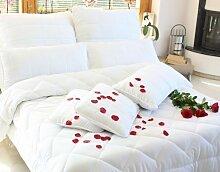 Julido 4 Jahreszeiten Bettdecke Steppbett