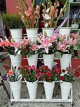 JUN-Blumentreppen Flower Shop Flower Stand Eisen