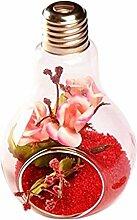 JUNGEN Glühbirne Modellierung Glas Vase hängen