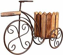 JXGJLNHP Kreative Eisen Fahrrad Holz Sukkulenten