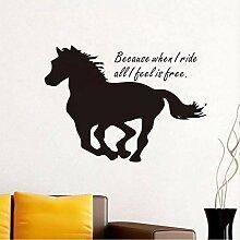 JXNY Denn wenn ich reite Englisch Pferd Muster