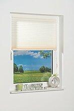 K-home Klebe-Plissee  Creme Lichtschutz, 110 x 130 cm (B x L)