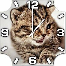 Kätzchen, Design Wanduhr aus Alu Dibond zum Aufhängen, 48 cm Durchmesser, schmale Zeiger, schöne und moderne Wand Dekoration, mit qualitativem Quartz Uhrwerk